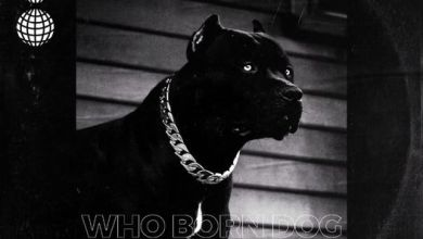 Photo of Guru Nkz – Who Born Dog (Prod By Mr Hanson)