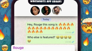 Photo of Rouge – Wag ft Sarkodie x Youssoupha