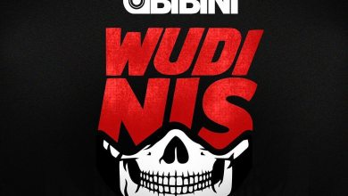 Photo of Obibini – Wudini Anthem (Amerado Diss 3)