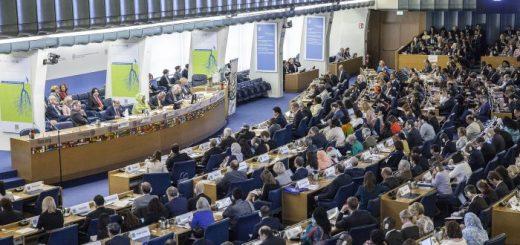 Sessione Plenaria del Comitato per la Sicurezza Alimentare Mondiale (CFS) della FAO, ottobre 2017. (fonte immagine: Fao.org)