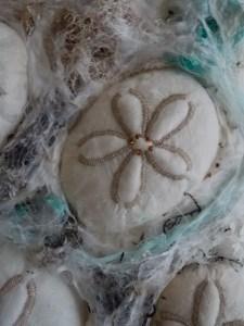 Sea Biscuit detail 2