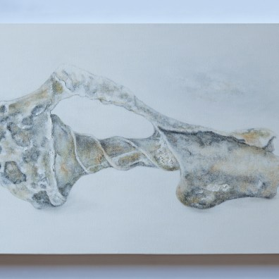 "Fossilized Shells , Oil on Canvas, 30"" x 20"" (each painting)"