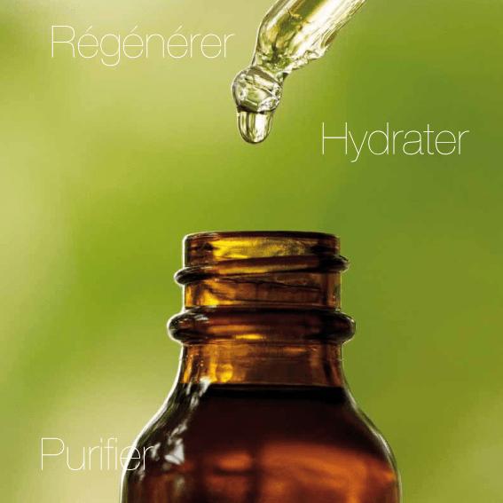 HAIRborist - Régénérer, hydrater, purifier