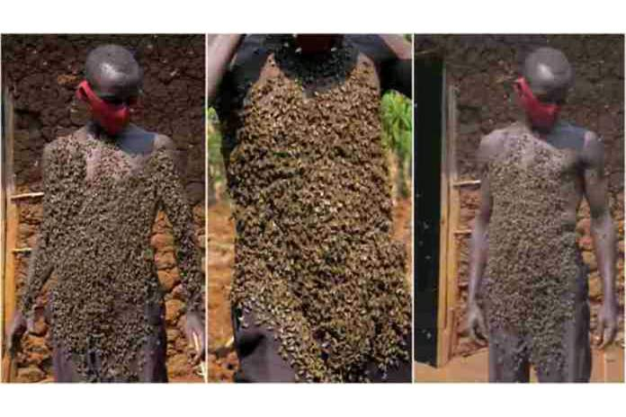 Meet the man who walks with thousands of bees on his body for over 30 years