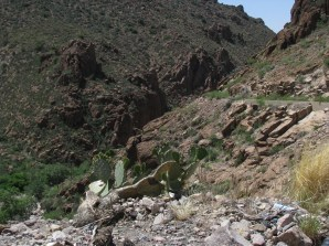 A cactus at the edge of the canyon wall. An old retaining wall for the abandoned US60 roadbed is visible to the right.
