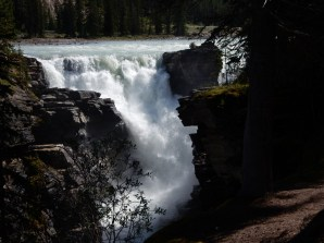 The Athabasca Falls in Jasper Park.