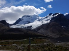 The snowfield south of the Athabasca Glacier in Jasper Park.