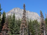 An almost hoodoo-like formation towers over the Going-to-the-Sun Road.