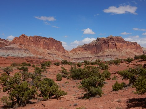 Distant canyon walls in Capitol Reef NP.