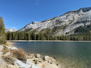 A pretty lake west of Tioga Pass.