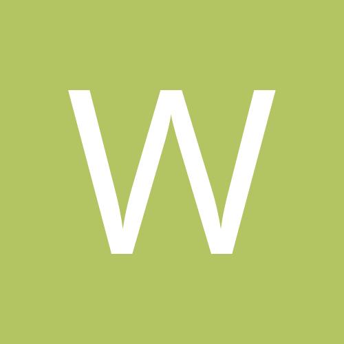 wolfsrain1