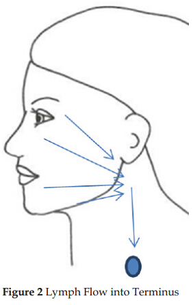 Manual Lymphatic Drainage with Facial Paralysis after