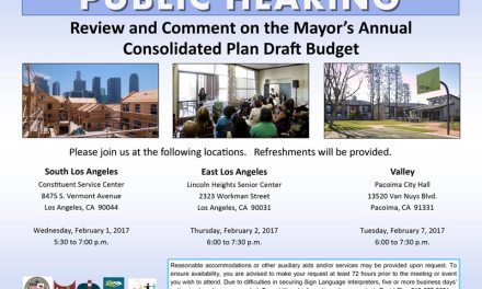 Review and Comment on the Mayor's Annual Consolidated Plan Draft Budget