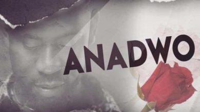 Photo of Bisa Kdei – Anadwo (Prod. By Apya)