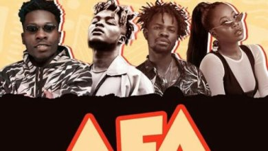 Photo of Article Wan feat. Fameye, Quamina MP & Freda Rhymz – Afa
