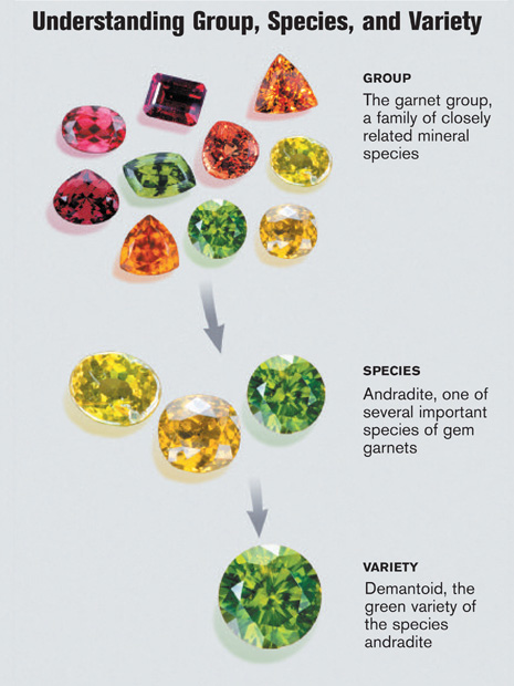 Garnets là một nhóm các loài khoáng vật có quan hệ họ hàng gần với nhau, với nhiều màu sắc khác nhau. GIA