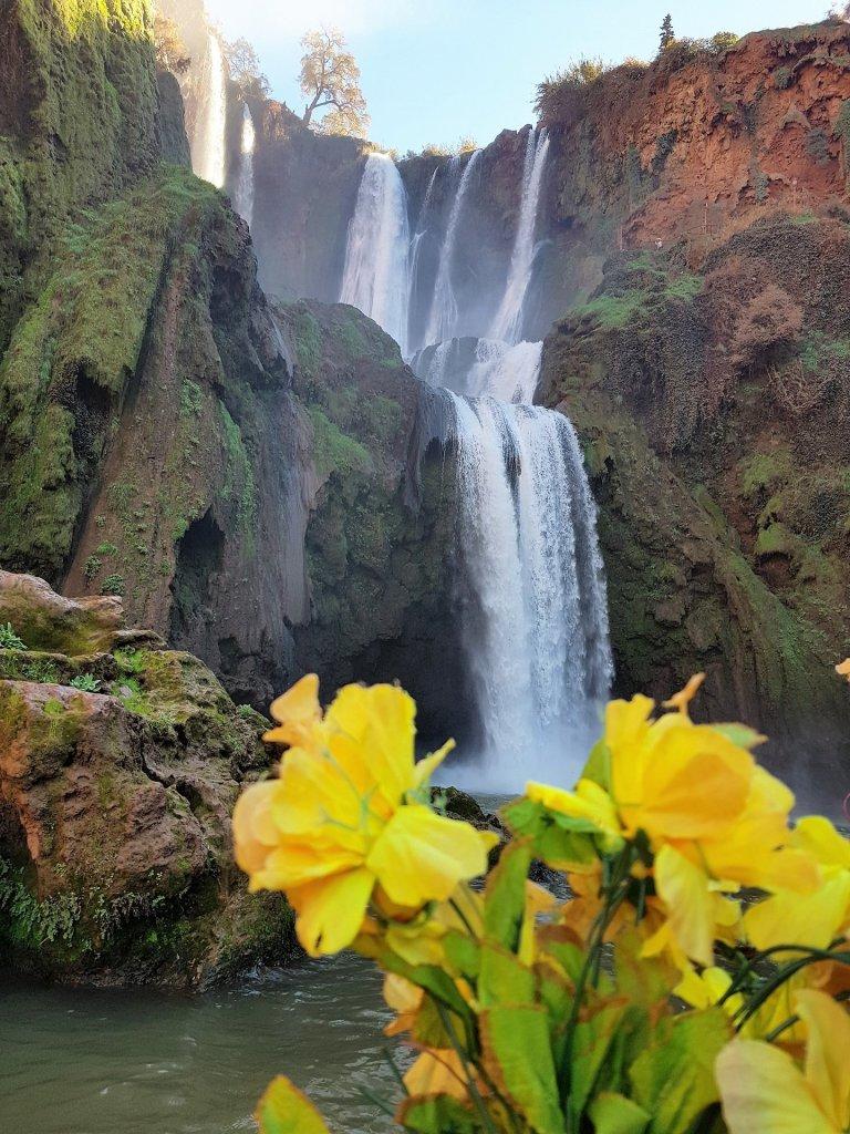 Cascata con fiori