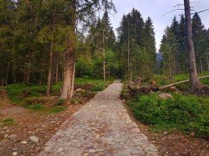 Sentiero 220 Valcanale fino al lago branchino