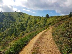 sentiero pianeggiante