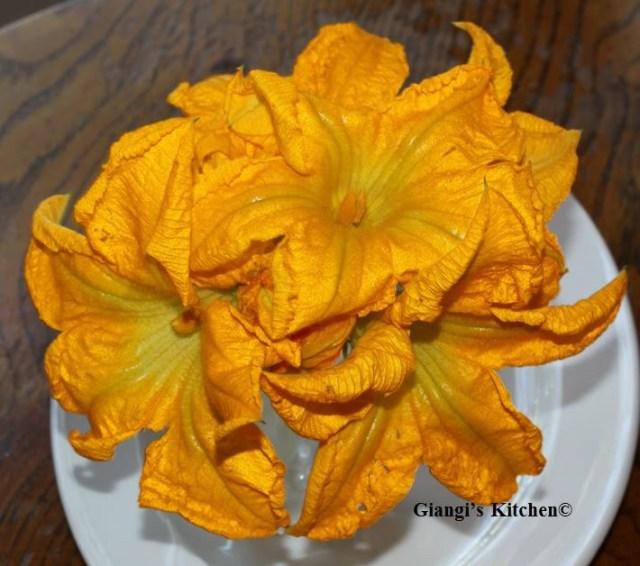 Zucchini-Flowers.-2-copy-JPG-8x6.JPG