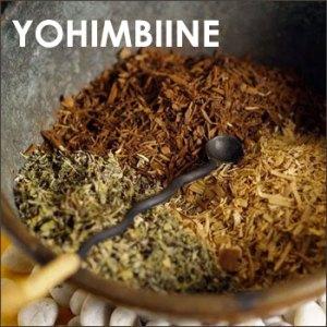 Yohimbine extracts supplements