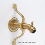Trevi Water Spout