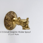 Small Dolphin Water Spout