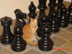 """giant chess loved by the """"whole family"""""""
