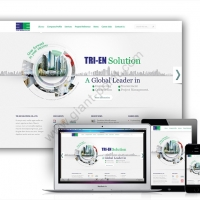 webdesign_triensolution
