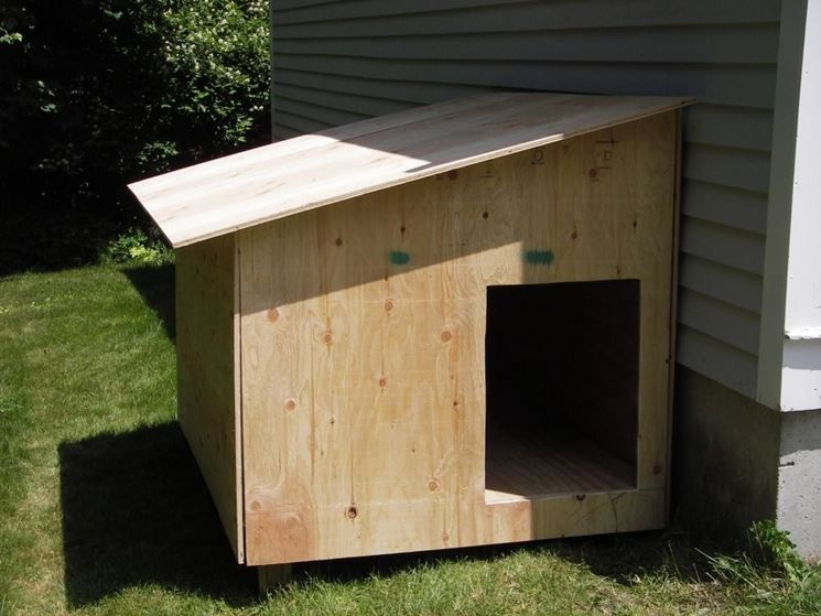 Come Costruire Una Cuccia Per Cani Accessori Da Esterno