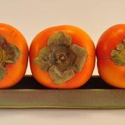 Kaki  piante da frutto  Coltivazione del kaki