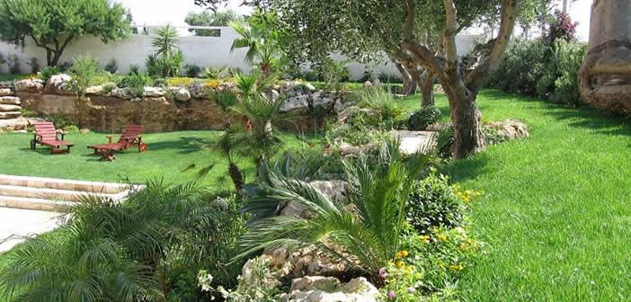 Il giardino mediterraneo le caratteristiche for Giardino mediterraneo