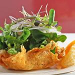 L'insalata Microgreen che puoi coltivare in qualsiasi momento dell'anno