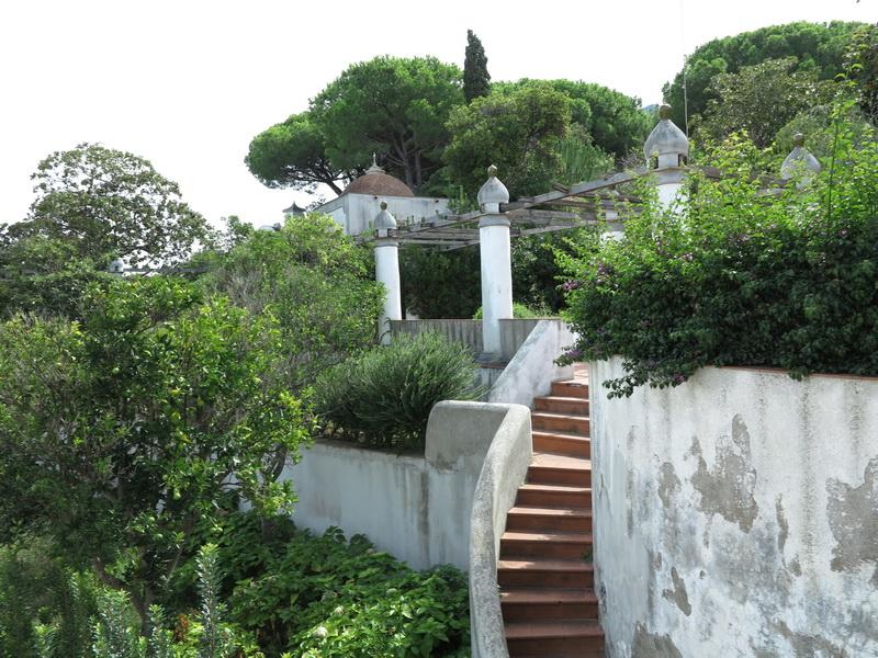 Ischia vacanze e giardini  Giardini in viaggio