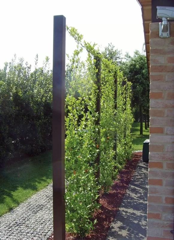 Progetti di Verde Verticale a Padova Vicenza Treviso e Venezia  Giardini Cesare Pavin