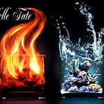 I Quattro Elementi e la Quintessenza