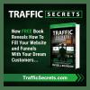 Russell Brunson's new book Traffic Secrets