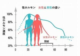 男性ホルモンが次第に減ってくる