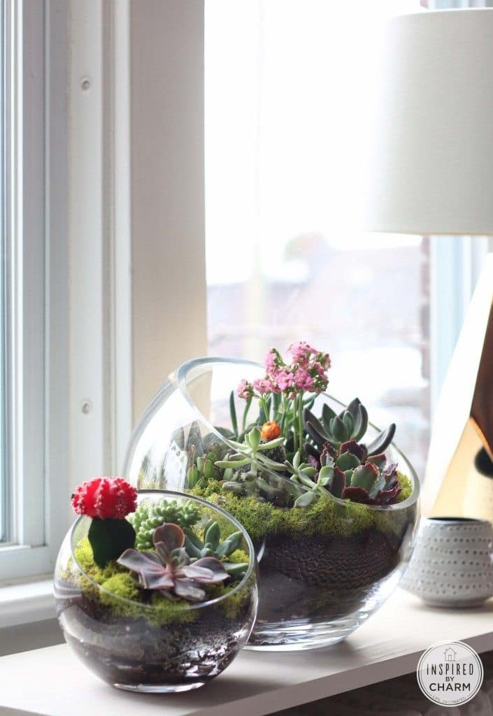 Five Amazing DIY Succulent Planters Giddy Upcycled