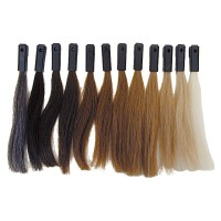 12 Levels Hair Color Testing Swatches 100% Human Hair by ...
