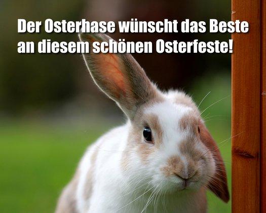 Whatsapp Ostergrüße Iphone 2021