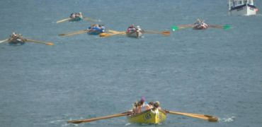 Saturday's Regattas – Coverack, Teign & Appledore