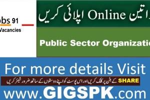 career jobs 91 Apply Online 2021 gigspk