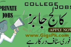 Pakistan Embassy College Beijing PECB Islamabad Teaching Jobss Teaching & Non Teaching Staff