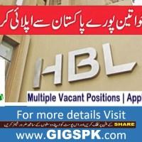 HBL Habib Bank Limited Karachi Jobs 2021 for Relationship Manager