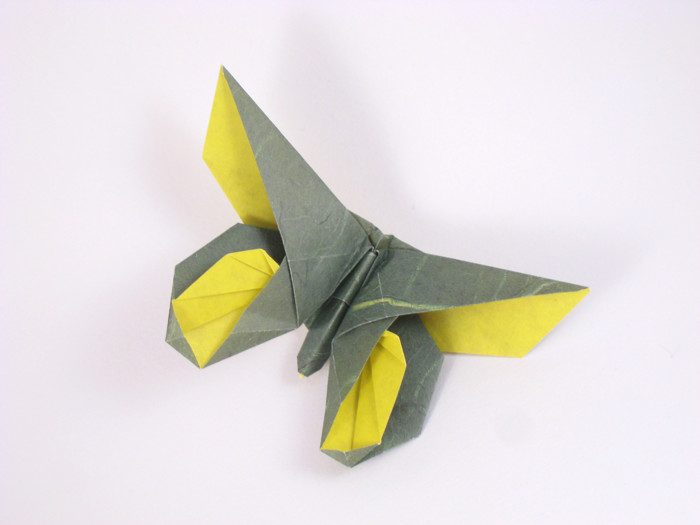 Diagrams And A Shockwave Diagram Searchable Databases Of Origami