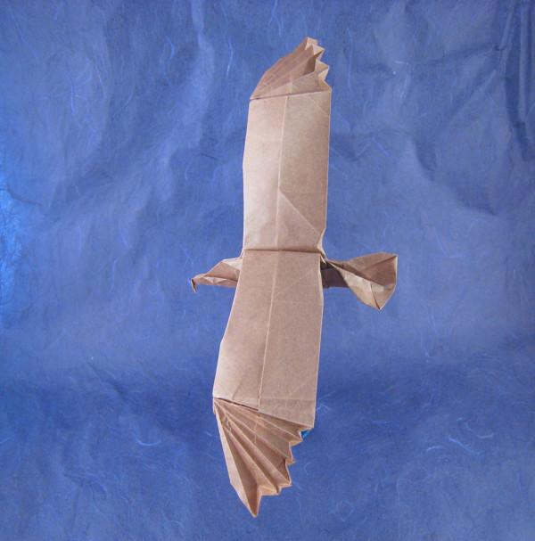 Origami Eagle Origami Eagle Diagram Origami Eagle Http Www Origami