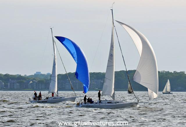 Annapolis Marylands Sailing Regattas