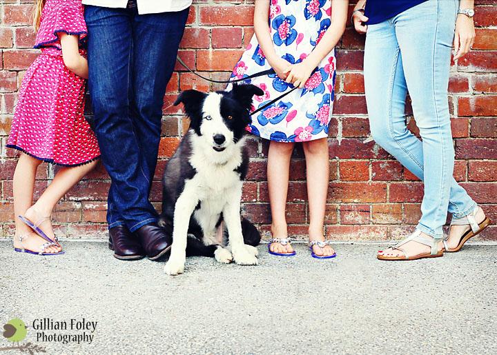 The Mandile Family   Gillian Foley Photography