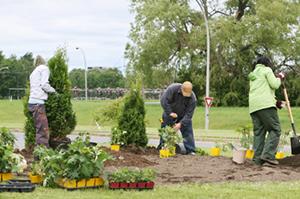 yard maintenance sebastopol